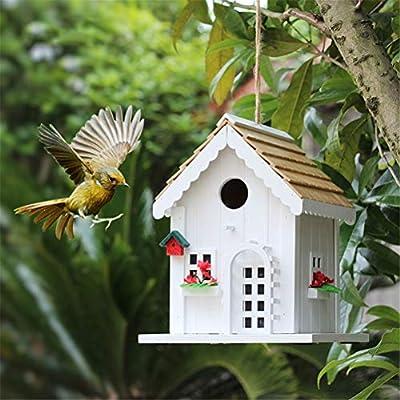 Casa De Aves para El Exterior Decoración Interior Casa De Pájaros Y Jardín Patio O Balcón, Al Aire Libre Colgador De Aves De Árboles Colgantes: Amazon.es: Deportes y aire libre