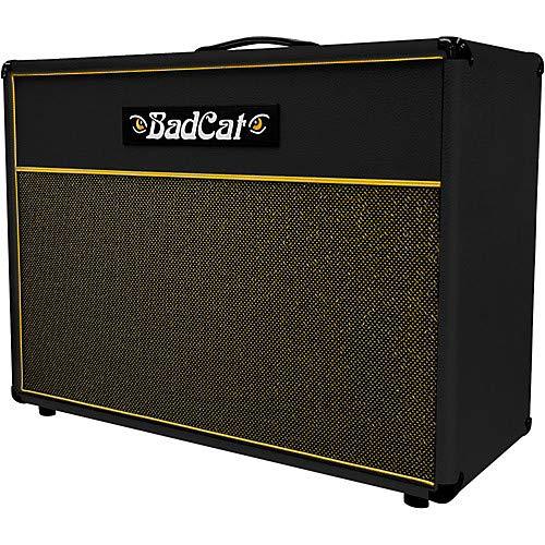 - Standard Extension 120W 2x12 Guitar Speaker Cabinet