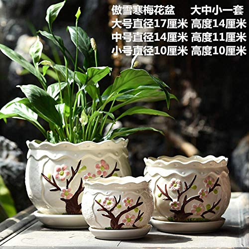 Zhihuoyou Flower Pot Ceramic Large Special Belt Tray Chinese Wind Creative Home Green Hanging Orchid Meat Meat Flowerpot Proud Snow Han Plum Flower Pot 3 Pieces Big