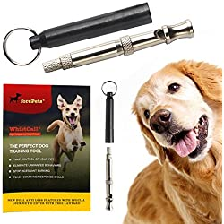 ONE DAY SALE - Professional WhistCall Dog Whistle for Bark Control and Obedience Training | Best New Improved Anti Loss Version | with Free Lanyard | 100%