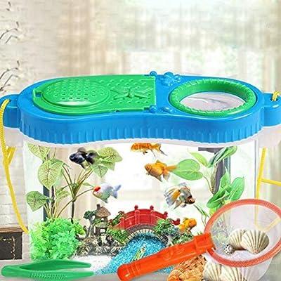Conflicto insecto, casas de reptiles Catcher Kit para niños lupa de insectos Critter jaula con correa Bug montando Net y pinza de plástico: Amazon.es: Bebé