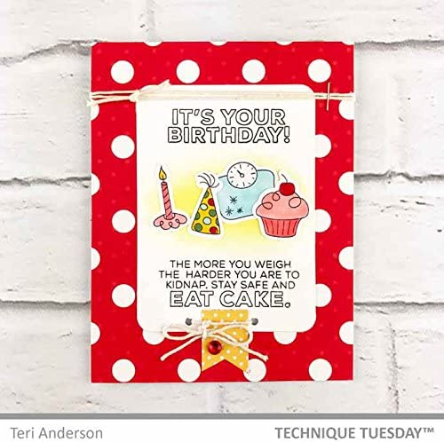 Card Making Supplies Card Sentiment Rubber Stamps Photopolymer Stamps Funny Birthday Saying Stamps Sassy Birthday 2.0 Clear Stamps