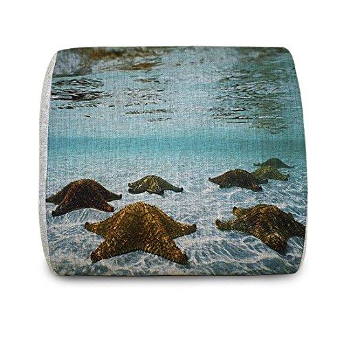 Motolan Underwater Seastarsポータブル腰椎サポートクッションバッククッション枕のメモリ発泡挿入、12.4