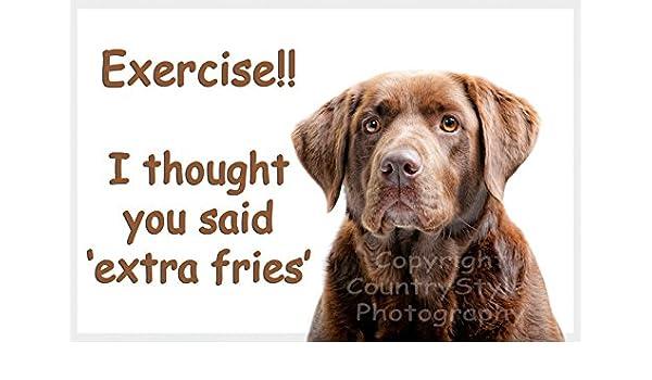Marrón de Labrador Perro imán para nevera con texto diseño de ...