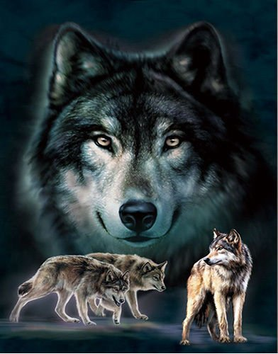 3D Home Wall Art Decor Lenticular Pictures, Wolves Collection Holographic Flipping Images, 12x16 inches Animal Poster Painting, Without Frame, Wolves in Dark by TripStan
