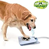 Letdown Outdoor Dog Pet Water Fountain, Durability Trouble-Free Outdoor Dog Cat Pet Drinking Water Fountain