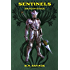 Sentinels: Dragon Rider