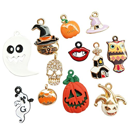 Dandan DIY Assorted 12pcs Halloween Alloy Charm Pendant Pumpkin Owl Ghost Skull Jewelry Making (Halloween ()