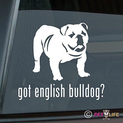 english bulldog vinyl car sticker - 9