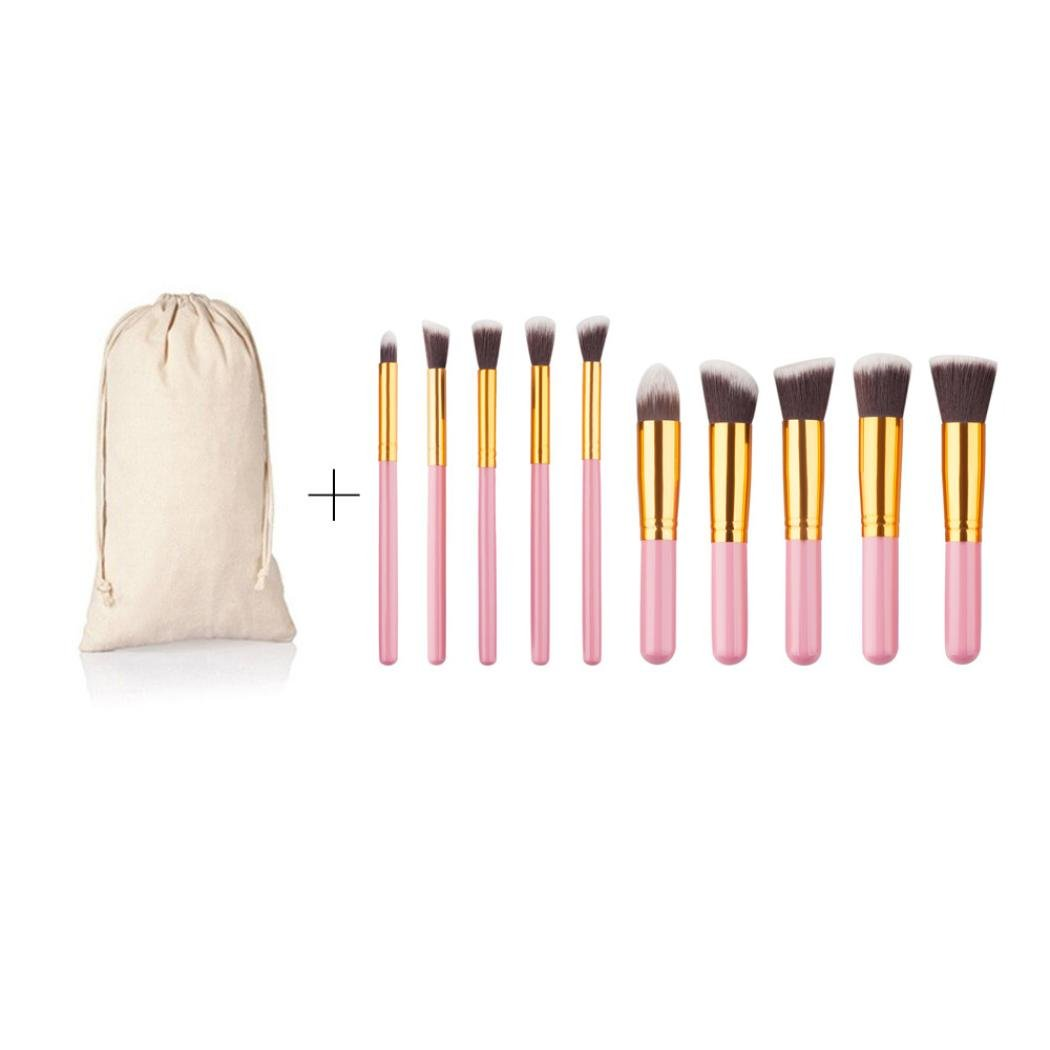 Pinceau Maquillage BZLine, 10Pcs Pinceaux Professionnel & Brush Cosmétique pour les Poudres, Anticernes, Contours, Fonds de Teints et Eyeliner BZLine® BZL-01