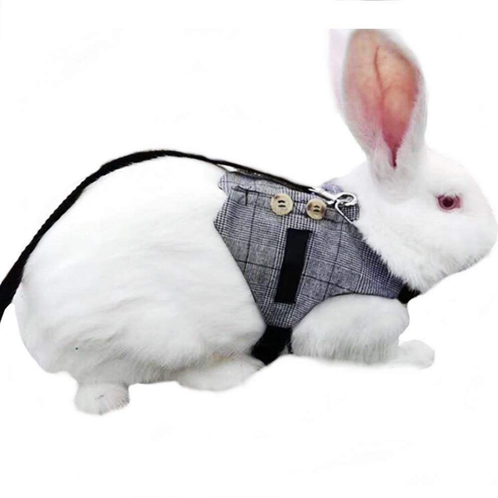 Stock Show Cute Vintage Bunny Vest Harness and Leash Set with Button Decor Small Pets Adjustable Formal Suit Style Plaid Stripe Harness for Rabbit Kitten Small Animal Walking Jogging by Stock Show