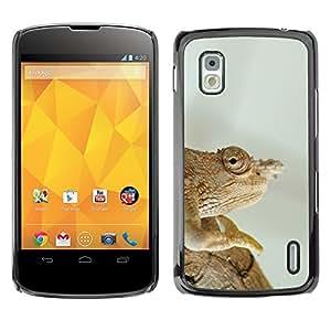 Hot Style Cell Phone PC Hard Case Cover // M00130800 Chameleon Sleep Ordinary Chameleon // LG Nexus 4 E960