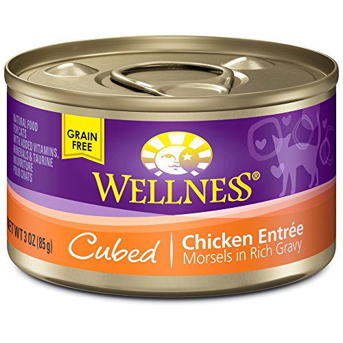 Wellness Natural Food Morsels Chicken product image