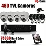 HQ-Cam\xae 8-Channel H.264 DVR Surveillance Security Package System with 4 x 480 TV Lines Indoor Day Night Vision Dome Cameras For Home Security with Power Suplies and Cables, Pre-Installed 750 GB HDD