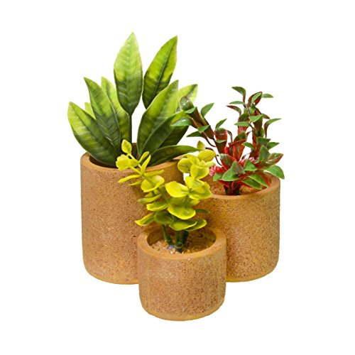 Blue Ribbon EE-1750 Exotic Environments Round Flower Pot Garden