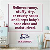 Little Remedies Saline Spray and Drops, Safe for