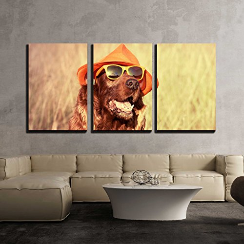 wall26 - 3 Piece Canvas Wall Art - Funny Retro Dog Wearing Sunglasses and Hat - Modern Home Decor Stretched and Framed Ready to Hang - 24