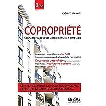 Copropriété - Connaître et appliquer la réglementation comptable (French Edition)