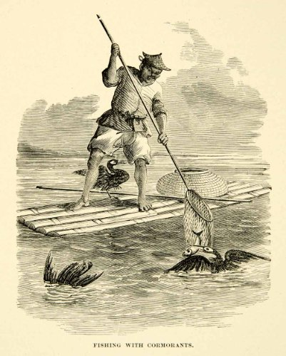 1902 Wood Engraving Fishing Cormorants Net Raft Traditional Chinese Birds Art - Original In-Text Wood Engraving