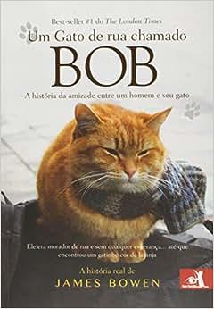 Um Gato de Rua Chamado Bob - 9788581631523 - Livros na