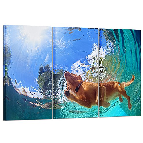 Kreative Arts - 3 Pieces Large Canvas Wall Art Golden Retriever Dog Swimming Under Sea Picture Modern Giclee Print Gallery Wrap Home Decor Ready to Hang 16x32inchx3pcs