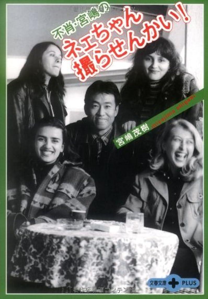 ピンポイント吐き出すキャラクター日本軍艦戦記 太平洋戦争 (文春文庫PLUS)