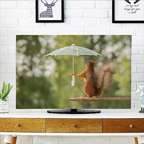 (Philiphome Cover for Wall Mount tv Female red Squirrel Stand on Stone h a Umbrella Cover Mount tv W36 x H60 INCH/TV 65
