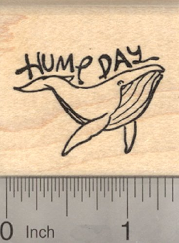Hump Day Rubber Stamp, Alaska Style, Humpback Whale