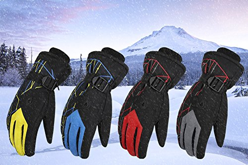 WATERFLY Men's Ski Snowboard Snowmobile Gloves Winter Cycling Gloves Windproof Snowproof Outdoor Sports Gloves