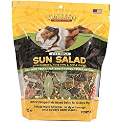 Vitakraft Vita Prima Sun Salad Treat for Guinea Pigs (10 oz)