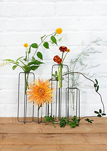 Afloral Metal Skyline Plant Stand with Glass Tube Vases - 11.5