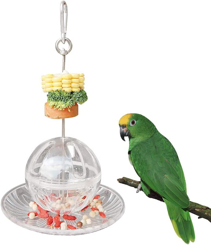 Bird Stainless Steel Skewer Plate Feeding Set, Bird Cage Fruit Vegetable Holder, Hanging Food Fruits Acrylic Plate & Ball Feeding Device, Lovebird Foraging Toys Feeder for Parrot Budgies Eclectus