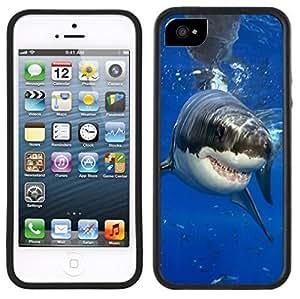 Shark Handmade iPhone 5C Black Case