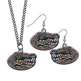 Siskiyou NCAA Florida Gators Chrome Dangle Earrings & Chain Necklace Set, Orange