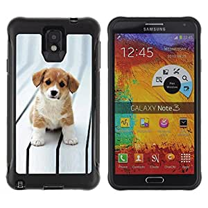 Suave TPU GEL Carcasa Funda Silicona Blando Estuche Caso de protección (para) Samsung Note 3 / CECELL Phone case / / Puppy Cut Adorable Brown White Big Eyes /