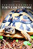 Turtle or Tortoise - Curious Kids Press, Curious Press, 149967824X