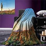 Anniutwo Saguaro Warm Microfiber All Season Blanket Sun Goes Down in Desert Prickly Pear Cactus Southwest Texas National Park Print Image Blanket 62''x60'' Orange Blue Green