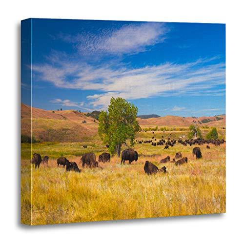 Semtomn Canvas Wall Art Print Buffalo Bison on Grasslands Custer State Park South Dakota Artwork for Home Decor 16 x 16 ()
