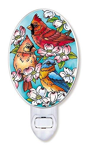Light Glass Cardinals Night (Amia Songbird and Cardinal Glass Night Light, Multicolor)