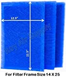 RayAir Supply 14x25 Dynamic Air Filter (3 Pack) (14x25)