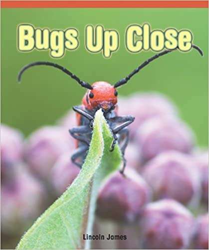 Bugs Up Close (Real Life Readers)