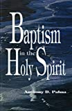 Baptism in the Holy Spirit 9780882433233