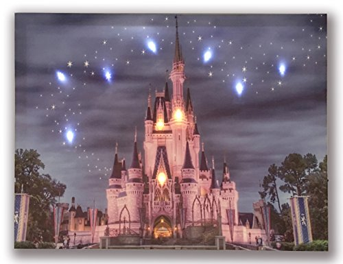 Hong Art- Lighted Canvas Prints with 9 LED Lights - Disney Resort Photo Castle Picture- Wall Art for Home Decor-12x16 Inch (Castle Canvas Art)