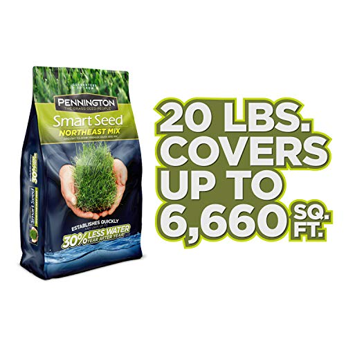 Pennington 100526640 Smart Seed Northeast Mix Grass Seed, 20 LB by Pennington (Image #4)
