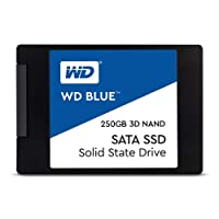 WD Blue 3D NAND 250GB Internal PC SSD - SATA III 6 Gb/s, 2.5
