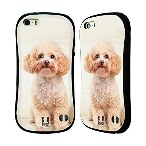 Head Case Designs Sitting White Poodle Popular Dog Breeds Hybrid Gel Back Case for Apple iPhone 5 5s