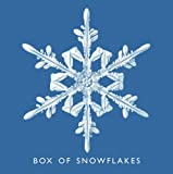 Fotofolio Holiday Boxed Cards, Snowflake asst.