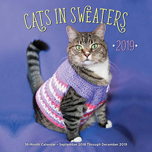 (Cats In Sweaters 2019: 16-Month Calendar - September 2018 through December 2019 )