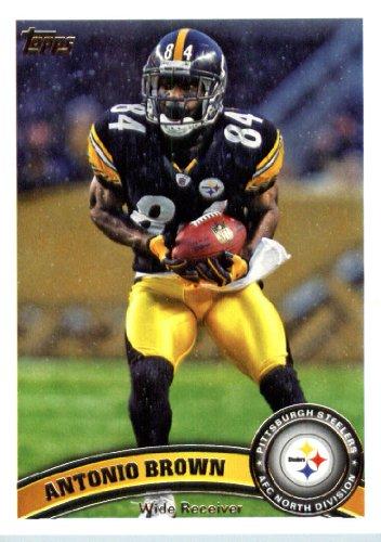 Pittsburgh Steelers Brown Football Case - 4