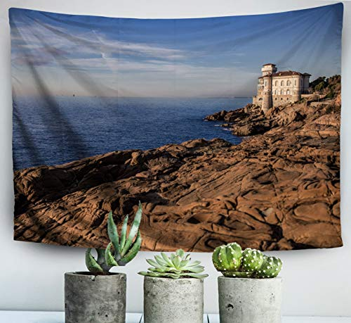 - ROOLAYS Easter Home Art Decor Wall Hanging Tapestry Beautiful View The Coast in Tuscany Italy Livorno with 80x60 Inches for Living Room Dorm Background Tapestries